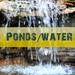 Ponds-waterfeatures-Nashville-75